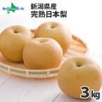 梨 果物 お取り寄せ 新潟県産 産地直送 新潟 完熟 日本 なし 3kg 果物 ギフト フルーツ Fruits Gift