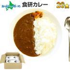 カレー レトルト 業務用 食研カレー 20食セット グルメ お取り寄せ ギフト