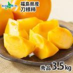 柿 刀根柿 たねなし柿 とねがき 福島 秀品 3.5kg ギフト Gift 果物 フルーツ Fruits