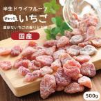 ドライフルーツ 国産 いちご 500g 送料無料 イチゴ ドライいちご 業務用 徳用 おやつ 南信州菓子工房 お菓子作りにも
