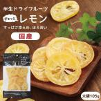 ドライフルーツ 国産 レモン 大袋 105g 送料無料 輪切り 皮まで美味しい 酸味控えめ ポイント消化 ドライレモン 南信州菓子工房 ギフト ヨーグルトに
