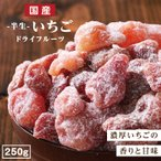 ドライフルーツ 国産 いちご 250g 送料無料 イチゴ ドライいちご おやつ 南信州菓子工房 徳用 お菓子作りにも
