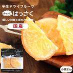 ドライフルーツ 国産 ハッサク 小袋 35g はっさく ドライハッサク ポイント消化 メール便 食品 おやつ 南信州菓子工房 ギフト ヨーグルトに