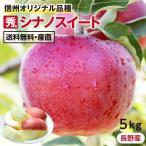 りんご シナノスイート 5kg 長野県産 秀品 送料無料 産地直送 葉とらずリンゴ お取り寄せ 旬の果物 贈答用 贈り物 ギフト