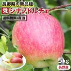 りんご シナノドルチェ 5kg 長野県産 秀品 送料無料 産地直送 葉とらずリンゴ お取り寄せ 旬の果物 贈答用 贈り物 ギフト