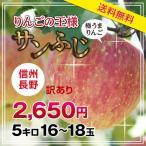 【送料無料】長野産 サンふじりんご 訳あり 5kg