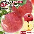 りんご 訳あり 5kg サンふじ 送料無料 長野県産 産地直送 訳ありりんご 傷あり お徳用