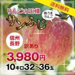 【送料無料】長野産 サンふじりんご 訳あり 10kg