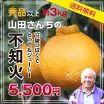 【送料無料】不知火(しらぬい)熊本県産 高級柑橘・デコポン・みかん