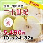 梨 二十世紀 10kg 秀品 送料無料 長野県産 産地直送 20世紀なし なし 旬の果物 贈答用 贈り物 ギフト