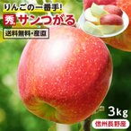 りんご サンつがる 長野県産 3kg 送料無料 秀品 産地直送 葉とらずリンゴ 信州 お取り寄せ 旬の果物 ギフトにも