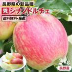 りんご シナノドルチェ 3kg 秀品 送料無料 長野産 リンゴ 産地直送 葉とらずリンゴ 信州 お取り寄せ 旬の果物 贈答用 贈り物 ギフト