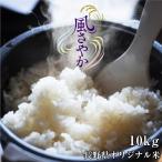 お米 10kg 送料無料 長野県産 風さやか 令和2年度産 精米 クリーン米 ( 無洗米 相当 ) 玄米 長野県オリジナル米 | 白米 10キロ 米 ブランド米 冷めてもおいしい