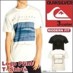 【1,000円ポッキリ!!】クイックシルバー QUIKSILVER ロゴプリント 半袖 Uネック Tシャツ サーフ ボーダー メンズ
