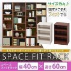 収納ボックス カラーボックス スペース フィット ラック 収納棚 幅40×奥行29×高さ60cm S-SFR6040 アイリスオーヤマ 本棚 書棚 人気 すき間 隙間