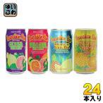 ハワイアンサン 4種アソートパック 340ml 缶 24本入