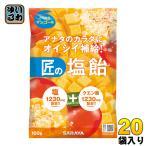 サラヤ ゲインズ 匠の塩飴 マンゴー味 100g 20袋入