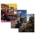 ネコ歩き 台湾/  ポルトガル/  瀬戸内海(3枚組ブルーレイセット)19406AA-19407AA-19408AA-NHK