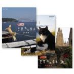 岩合光昭の世界ネコ歩き 山口/  ノルウェー/  ベルギー(3枚組ブルーレイセット)20583AA-20584AA-20585AA-NHK