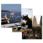 岩合光昭の世界ネコ歩き 山口/  ノルウェー/  ベルギー(3枚組DVDセット)20589AA-20590AA-20591AA-NHK