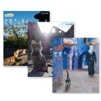 ネコ歩き アンダルシア/ モロッコ 海と山/ ブルガリア(3枚組ブルーレイセット)19714AA-19715AA-19716AA-NHK