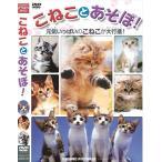 こねことあそぼ ペルシャ スコティッシュ・フォールド デボン・レックス メイン・クーン アメリカン・ショートヘア (DVD)TMW-047-CM