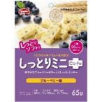 しっとりミニ ブルーベリー 65g ハマダコンフェクト バランス栄養食品【PT】