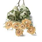 ドライフラワー 花材 SPローズ ホワイト 約7〜8輪 そらプリ