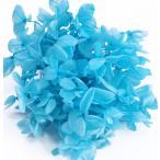 そらプリ hana oil ハーバリウム プリザーブドフラワー 花材 アジサイ 小分け スカイブルー