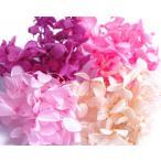 そらプリ hana oil プリザーブドフラワー ハーバリウム 福袋 花材 アジサイ 少量 ピンク系ミックス