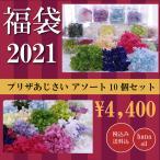 福袋 プリザーブドフラワー 花材 アジサイ 詰め合わせ 10個 ハーバリウム