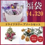 福袋 ドライフラワー 花材 詰め合わせ 10個 ハーバリウム