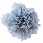 スタンダードカーネーション コットンブルー 小分け 1輪入 プリザーブドフラワー 材料 花材