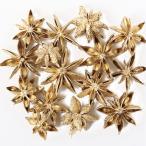 東北花材 木の実 ドライフラワー スターアニス ゴールド 約15個 花材 スパイス