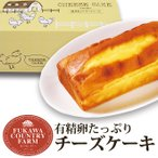 深川カントリーファーム 有精卵たっぷりチーズケーキ(FYC-5-P)*o-Y-ad-98045-01*