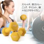 SONGMICS ダンベル 1kg 2個セット カラーダンベル 握りやすい 無臭素材 軽量 男女兼用 筋力トレーニング NSYL62YLV1
