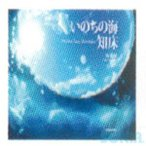【送料+1000円】HUSE(ヒューズ) 【3944】 B-67 いのちの海 知床