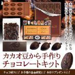 手作りチョコレート カカオ豆から手作りキット