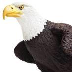 サファリ社 鳥フィギュア 251029 白頭ワシ L (ハクトウワシ)