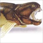 アメリカのSafari社が製作した恐竜たちのフィギア