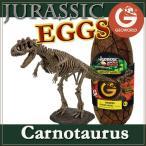 ジオワールド社 恐竜フィギュア ジュラシックエッグ 恐竜組み立てキット カルノタウルス