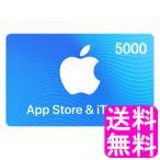 【翌営業日迄にコード通知専用商品】 App Store & iTunes ギフト 5000円