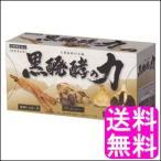 送料無料 ポイント消化 黒醗酵の力 【3粒×30包】