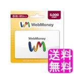 送料無料 ポイント消化 WebMoney ウェブマネー 5000 POINT (5000円分)