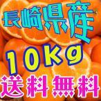 【送料無料】長崎県産みかん(西海市)無選別10kg