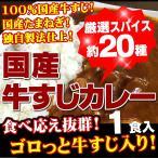 今だけオマケ付き 牛すじカレー1パック入り 100%国産牛すじ&たまねぎ使用 中辛 レトルトでは味わえない本格派カレーがお湯ポチャ10分で完成