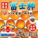 富士柿 愛媛県産 約5kg 5Lサイズ11玉から4Lサイズ12玉  JA愛媛、西宇和 八幡浜特産 優以上ランク 柿