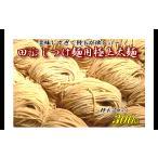 替玉 つけ麺と同梱専用 田ぶしつけ麺用 替玉 極上太麺(2玉入)