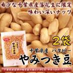 ただ今お買得 バタピー 殻ナシ やみつき豆 味付落花生 千葉産 60g×2袋 ピーナッツ 全国送料無料 小粒でポリポリ