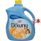 ☆送料無料☆ダウニー(Downy)